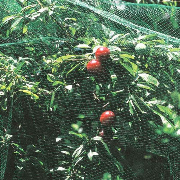 Мрежа срещу птици My Garden 20 г/м2 UV стабилизирана / ширина 5м