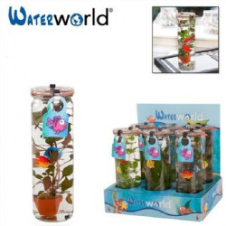 Воден свят Waterworld glas 2 bluppys