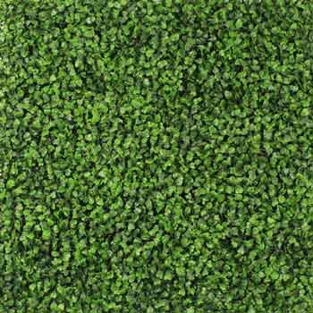 Изкуствена трева, защо не?